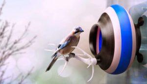 Nidi stampati in 3D per portare gli uccellini in città