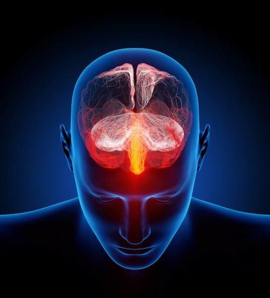Un dispositivo wireless per iniettare farmaci nel cervello e attivare i neuroni