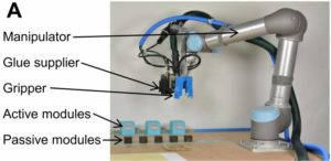 I robot che si evolveranno e si riprodurranno