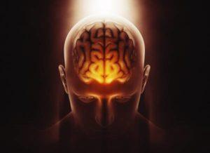 Al lavoro sul potenziamento del cervello umano