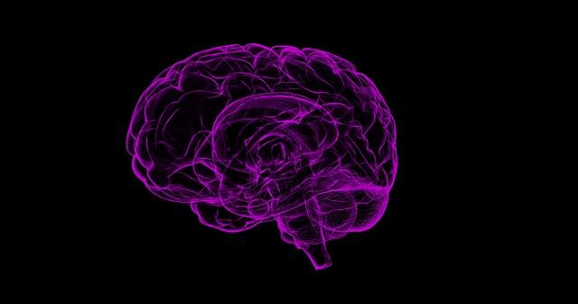 Un cervello in grafica 3D