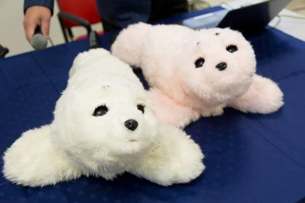 Due esemplari di Paro, la foca robot