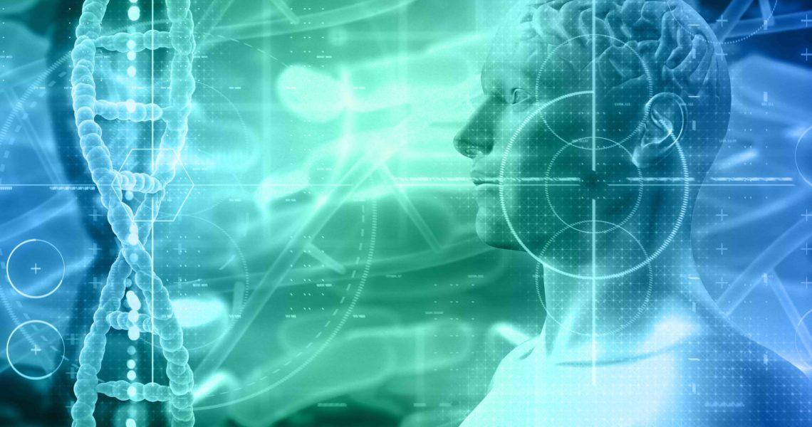 Figura umana digitale a mezzo busto in cui si vede il cervello in trasparenza